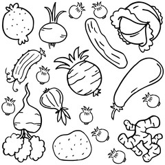 Doodle of vegetable style collection