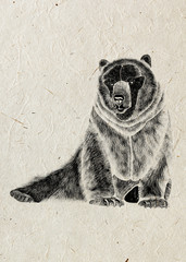 Drawing of sedentary fearsome bear, black silhouette on beige rice paper background.
