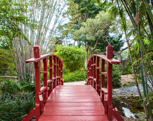 Beutiful and calm Japanese garden with red bridge