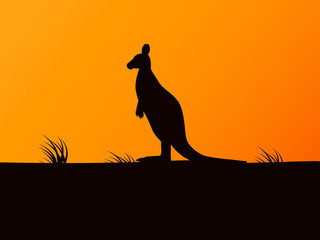 Vector silhouette kangaroo on background sunset