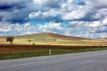 Agricultural land and road