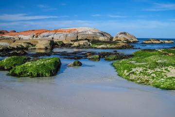 Beautiful coastal scenery, Bay of Fires, Tasmania, Australia