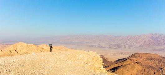 Wall Mural - Backpacker woman tourist  walking desert stone mountain plateau.