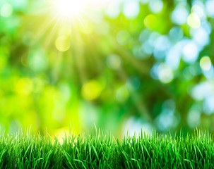 Green grass with sunset views. Blurred background.