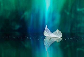 White transparent leaf on mirror surface with reflection on green background macro. Abstract artistic image of ship in waters of lake. Template Border natural dreamy artistic image for traveling.