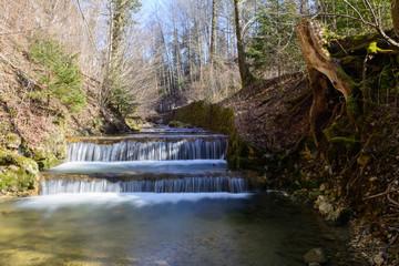 Wasserfall- Stufenwasserfall im Frühling im Wald