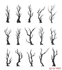 set of dead trees and branches