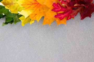 Multi-colored maple leaves on gray fabric from the top of the frame.