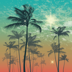 Wall Mural - Exotic tropical palm trees at sunset or sunrise. Vector illustration
