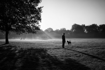 Woman walks with a dog in a park with another dogs on the backdrop.