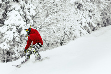 Man in red ski jacket and white helmet goes down the snowed hill in the forest