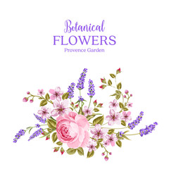 Botanical flowers garland. The sign Provence Garden over white background with rose and lavender. Spring flowers. Floral card on the white background. Vector illustration.