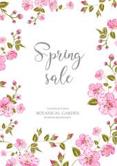 Cherry blossom sale card. Spring sale and botanical garden text over white background with sakura flower frame. Vector illustration.