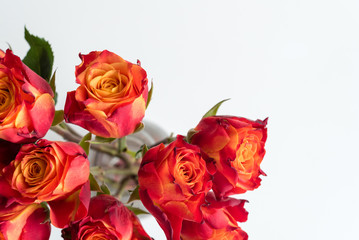 High angle view of red and orange roses in glass vase on white table (selective focus)