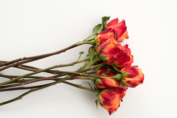 High angle view of red and orange roses in a bunch on a white table