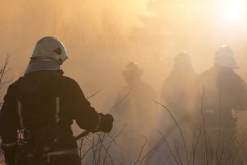 firefighters battle a wildfire