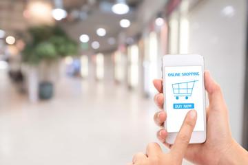 woman making shopping online.