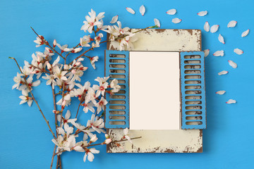 spring cherry blossoms tree and blank photo frame