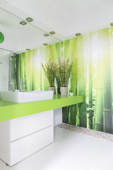 White and green bathroom