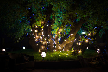 Night decorated lanterns and garlands park