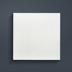 Blank canvas frame on gray background.
