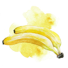 Hand painted watercolor bananas illustration with yellow artistic stains in the background