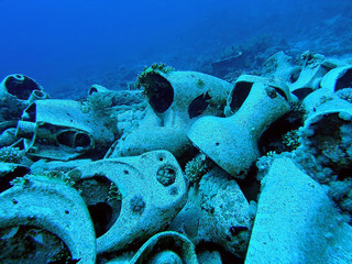 Yolanda / underwater photograph, toilet bowls from Yolanda wreck on the bottom Red Sea, Ras Mohamed National Park, Egypt, depth - 15m