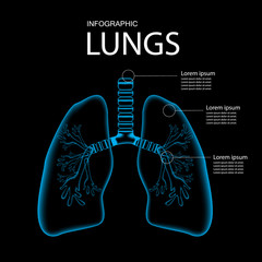Lungs pain, Lungs x ray