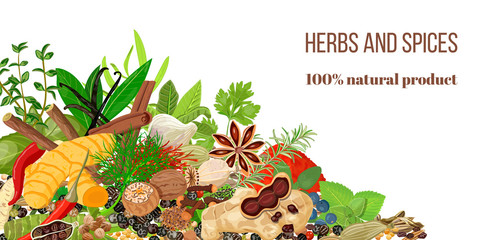 Card with Pile of Realistic popular culinary herbs and spices. Spice store logo. Shop sign