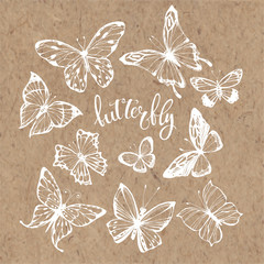 Butterflies. Vector set. Isolated hand-drawn elements on kraft paper.