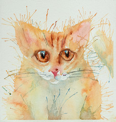 Watercolour cats.