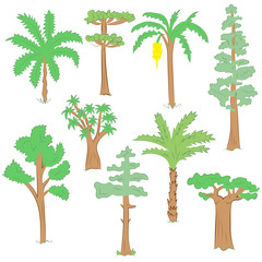 Hand Drawn Set of Green Trees. Doodle Drawings of Palms, Sequoia, Aloe, Acacia, Ceiba  in Flat Style.Vector Illustration.