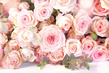 Tender pink roses for a wedding