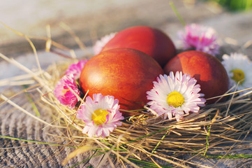 Easter red eggs and spring flowers in a nest on old wooden background.