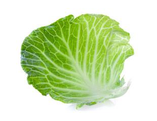 cabbage leaf on white background