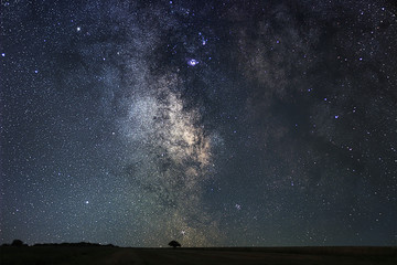 Night landscape with colorful Milky Way filed with lonely tree.