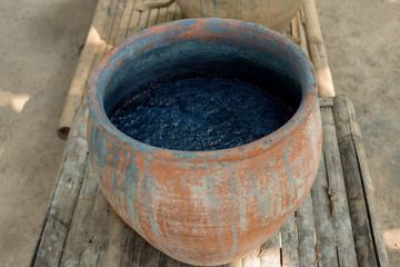 Indigofera tinctoria in fermenter