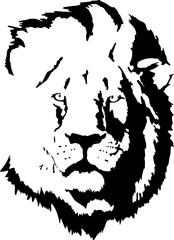 Fototapete - lion head tattoo-4