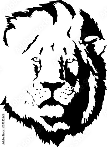 Lion Head Tattoo 4 Stock Image And Royalty Free Vector Files On