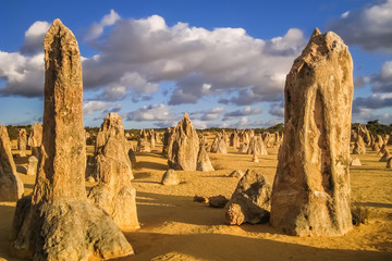 Bizarre rock formations The Pinnacles in late afternoon light, Nambung National Park, Western Australia