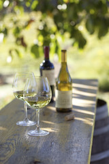 Wine bottles and glasses outdoors on rustic table