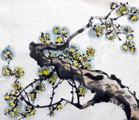 blossoming branch of plum