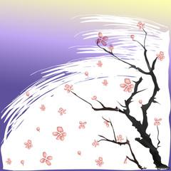 Print слетающие с ветки цветы сакуры