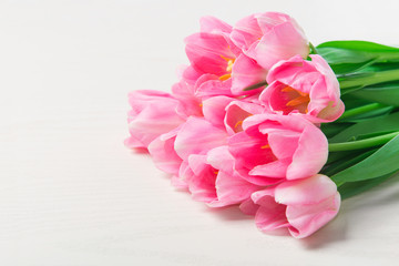 Beautiful Pink tulips flowers on white wooden background.