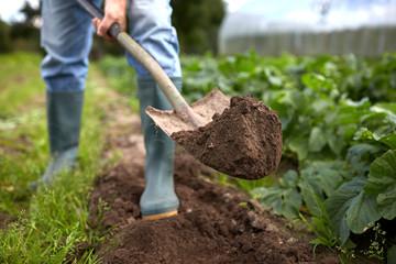 man with shovel digging garden bed or farm