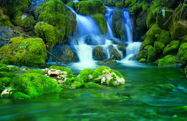 Mountain stream among the mossy stones Wall mural