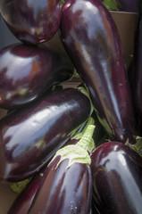 Eggplant, Sidewalk Market, Oxford, England