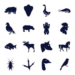 Set of 16 Animals filled icons