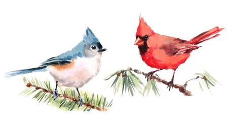Northern Cardinal and Titmouse Two Birds Watercolor Hand Painted Illustration Set isolated on white background