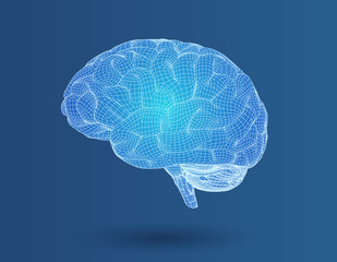 3D wireframe brain in side view on blue BG